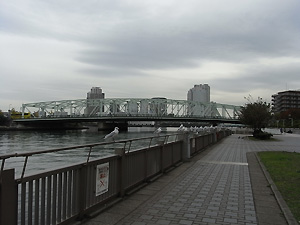 RIMG4411.jpg
