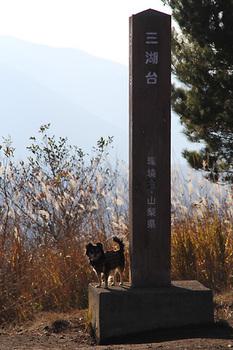 三湖台7.jpg