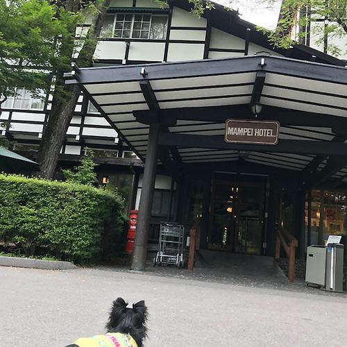 02軽井沢09.jpg