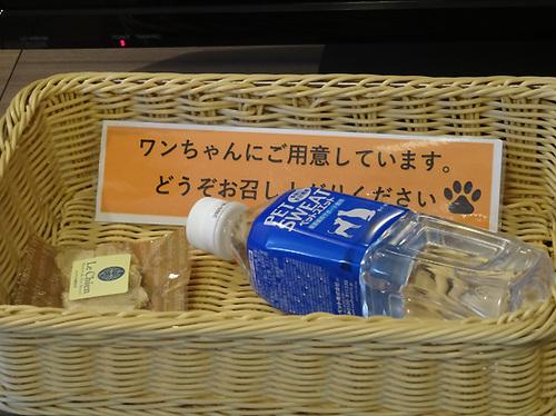 03軽井沢22.jpg