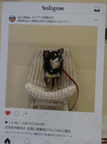 03軽井沢25.jpg