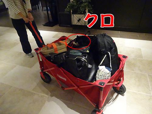4軽井沢16.jpg