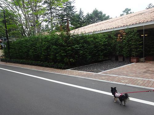 4軽井沢23.jpg