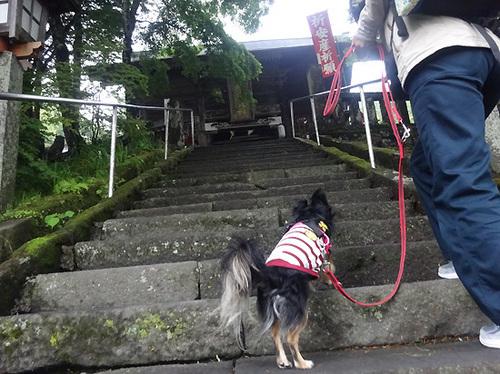 4軽井沢26.jpg