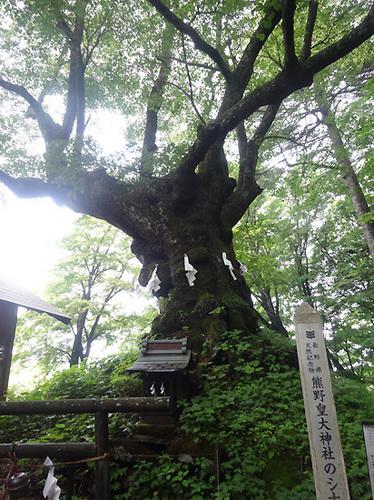 4軽井沢28.jpg